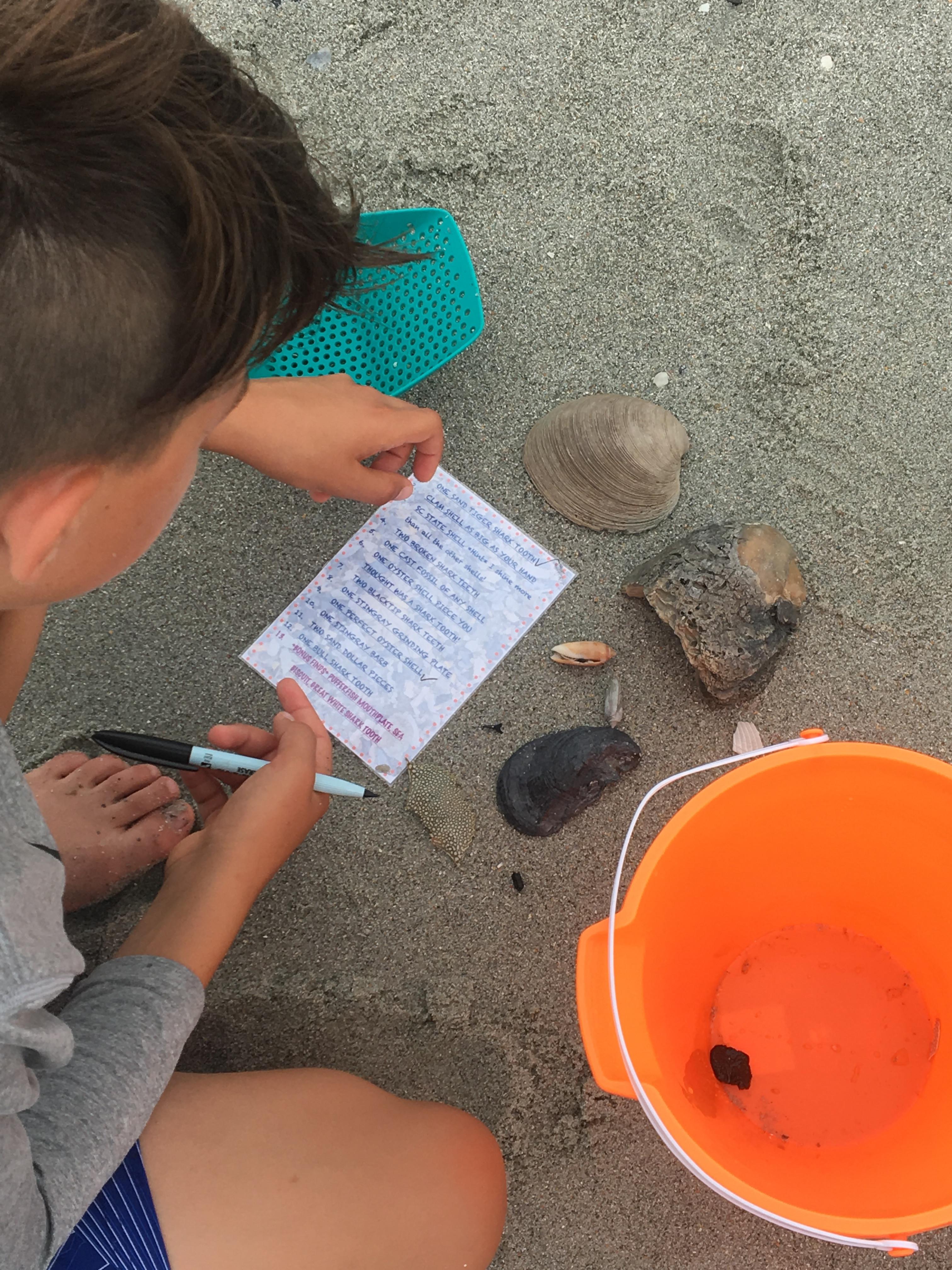 Shark Tooth Hunting -Staff Team Building