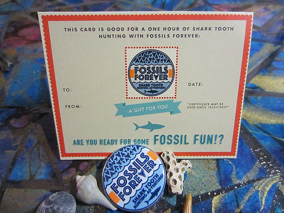 2 Hour Shark Tooth Hunting Gift Card & Logo Sticker!