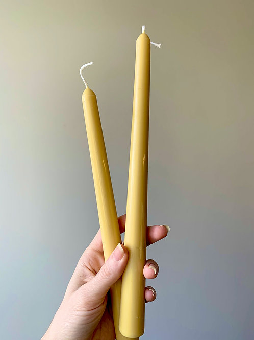 Beeswax & Coconut Tapers
