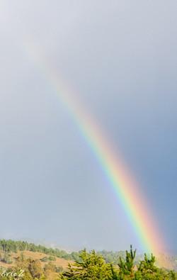 Ride the rainbow