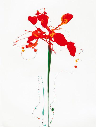 Flora XXV