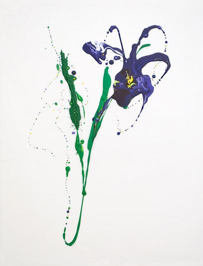 Flora XIX