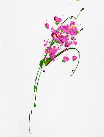 Flora VII