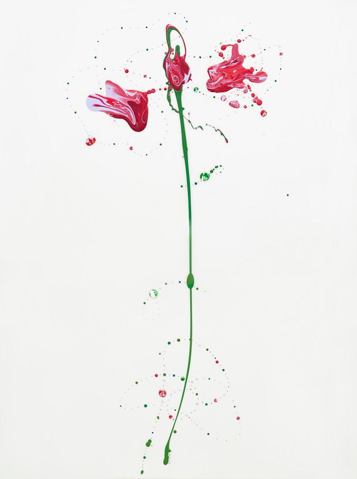 Flora XVI