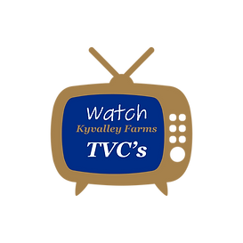 Kyvalley_TV.png
