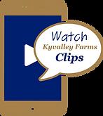 Kyvalley Video Clips