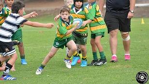 hgd rugby_edited.jpg