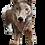 Thumbnail: Bébé Loup