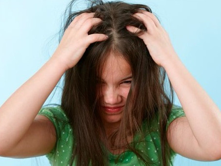 """Five """"Super Lice"""" Warnings for Katy Parents"""