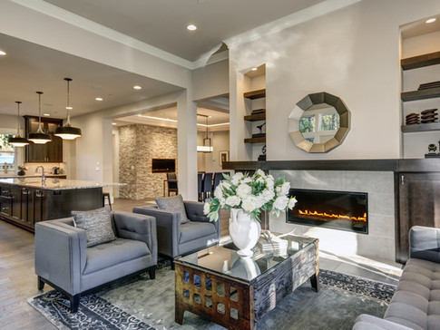 Living room design with shelves