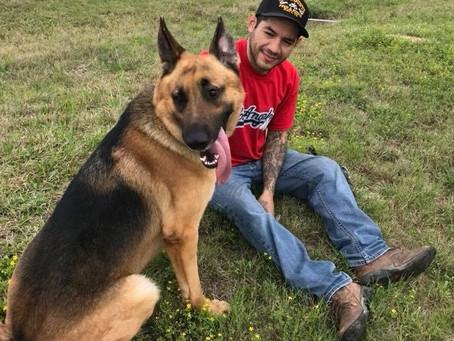 Katy Man Offers $1000 Reward for Return of Missing Dog Milo