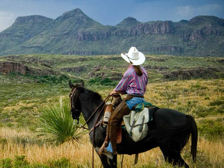 The Katy Family's Guide to Texas State Parks and Recreation