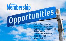 member-opportunities