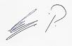 Signatur Sergi Patrick.png