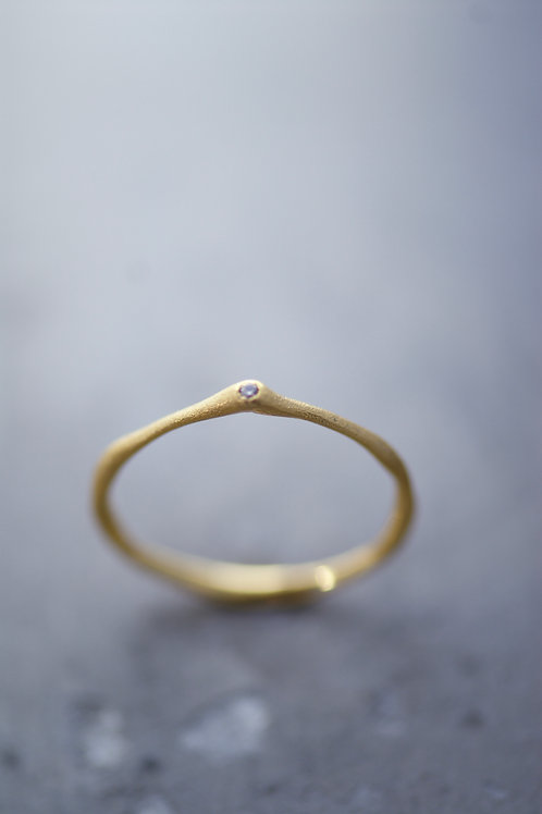 Ring Slim