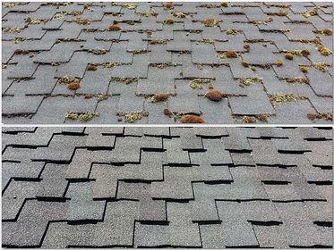 No-Pressure-asphalt-roof-cleaning.jpg