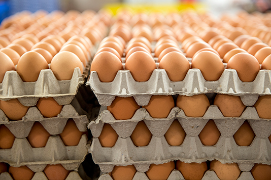 yumurta shrink paket