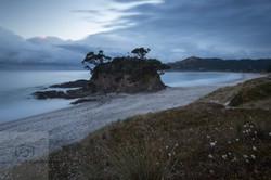 Memory Rock Great Barrier Is NZ