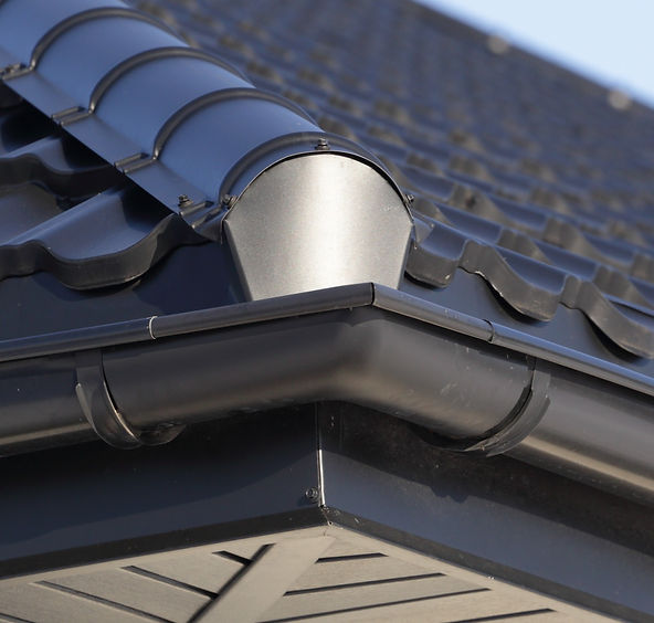 Corner of a Roof Gutter_edited.jpg