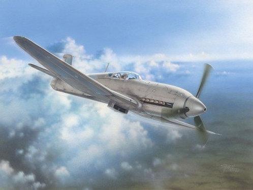 Special Hobby - Heinkel He100D IJN & Soviet Test