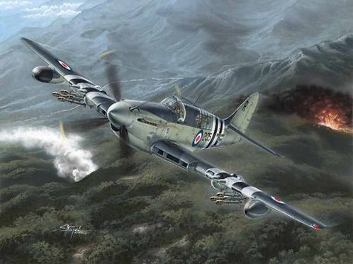 Special Hobby - Fairey Firefly Mk.4/Mk.5 1/48