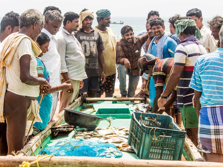 'Sea' the fisherfolk's struggles