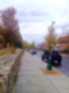 GreenStreetProject.jpg