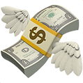 money-with-wings_1f4b8_200x.png