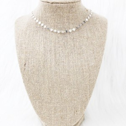 Small Silver Sequin Necklace