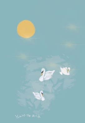 白鳥と月夜🦢🌕 Swan and moon night✨