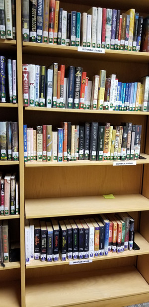 "Greenbrier High School Library Has a ""Christian Fiction"" Shelf, Mostly Filled with LaHaye/"