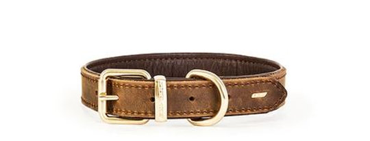 Oxford Leather collar clasico
