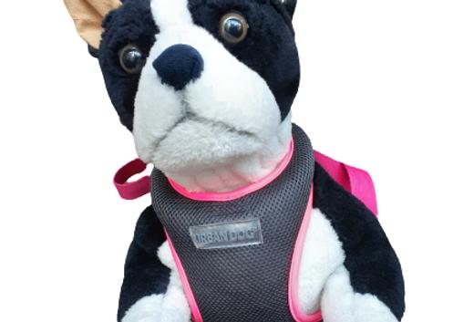 Pechera Urban dog XL