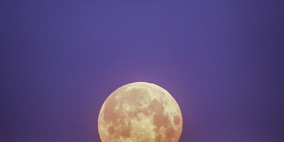 Full Moon Meeting - Howling at the Wolf Moon