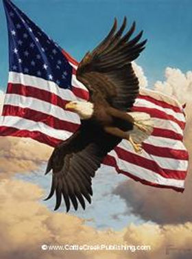 liberty flight image.jpg