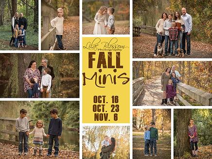 fall mini collage copy.jpg