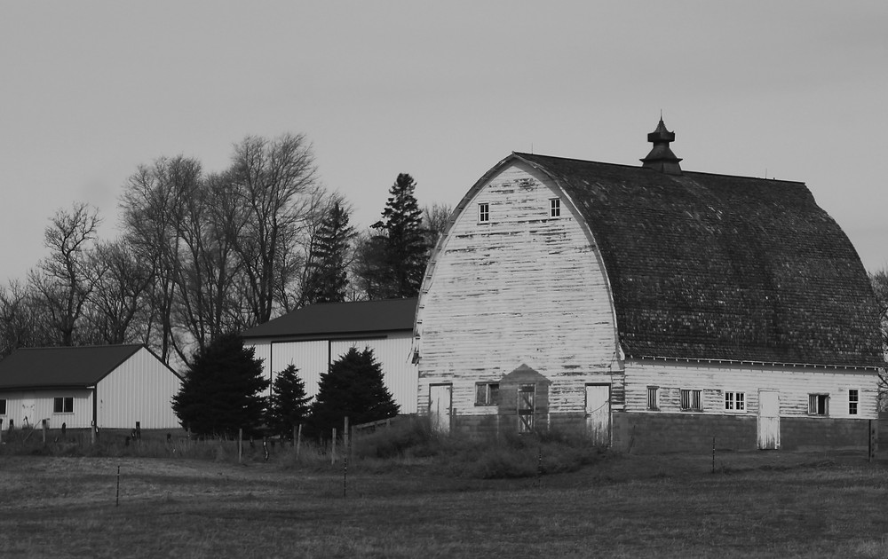 An image of an old barn on a post about how to tell how old your barn is. An old barn in good condition that can be sold in Pennsylvania
