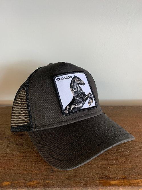"""Casquette / Hat """"Stallion"""" Goorin Bros"""