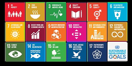 E_2018_SDG_Poster_with_UN_emblem_bewerkt