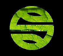 logo_sp_AMBIENTE E ACAO CLIMATICA.png