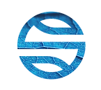 logo_sp_TRANSICAO ENERGETICA.png