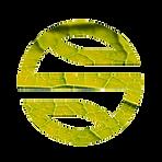 logo_sp_TRANSPORTES E MOBILIDADE.png