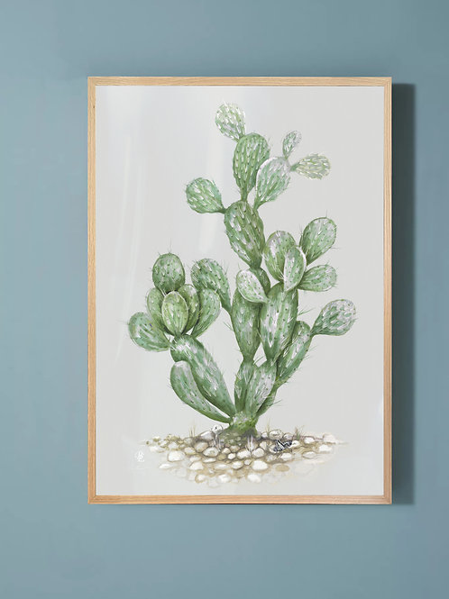 Prickly Pear-Green