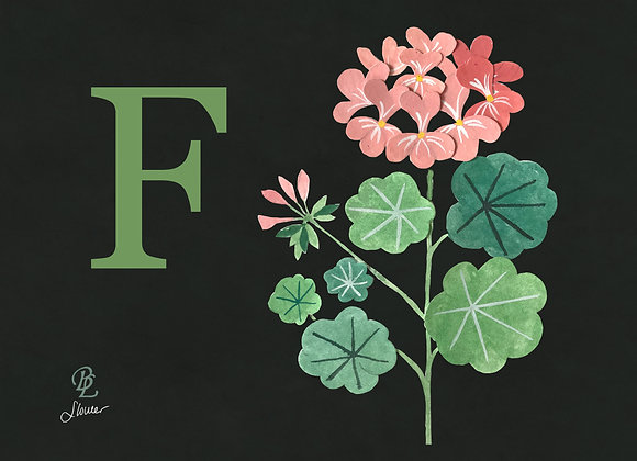 F for Flower Medium
