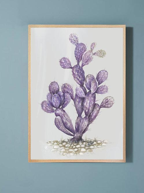 Prickly Pear-Purple