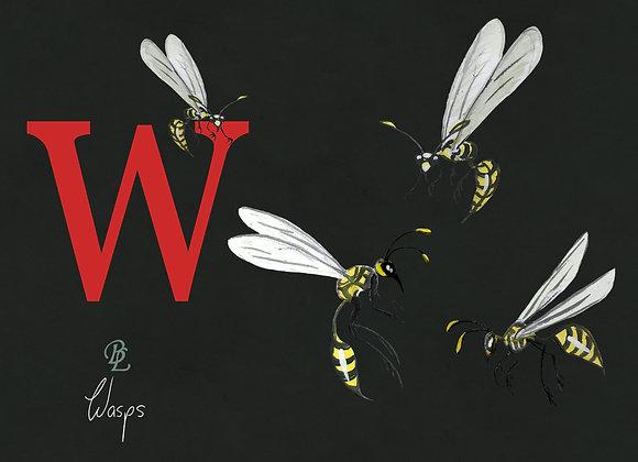W for Wasp Medium