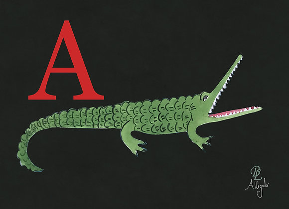 A for Alligator Medium