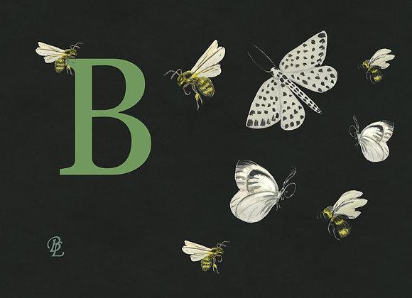 B for Bees & Butterflies Medium