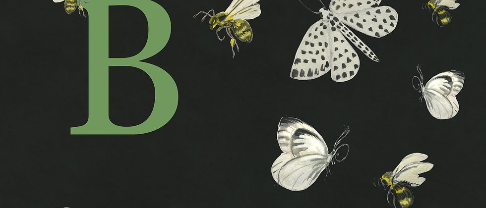 B for Bees & Butterflies Medium