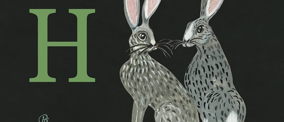 H for Hares Medium